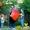 Клоуны на день рождения,  детские аниматоры в Магнитогорске - Феерия #848445