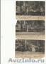 Продам почтовые открытки 1904 года